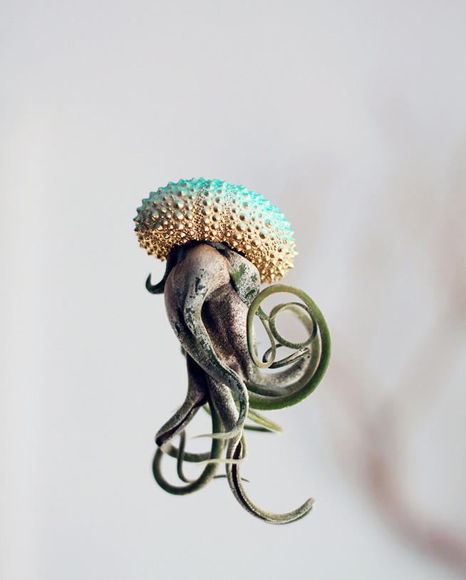 Воздушные медузы от Cathy Van Hoang