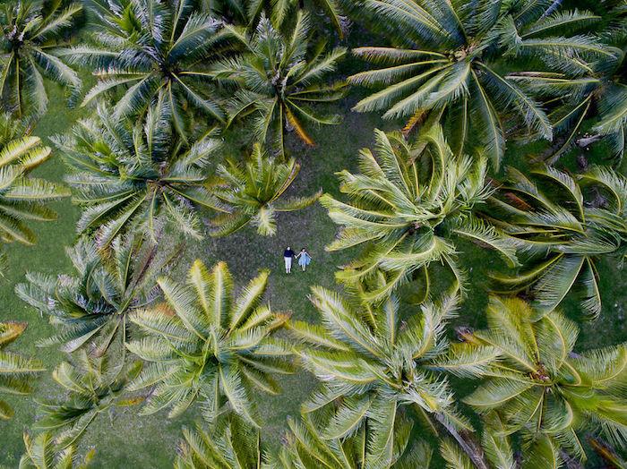 Свадебная фотосессия с высоты птичьего полета от Helene Havard