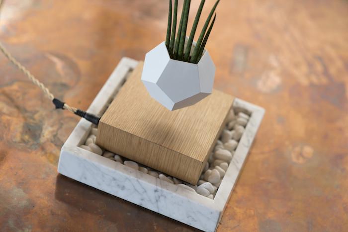 LYFE: левитирующий горшок для растений
