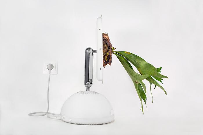 Plant Your Mac: горшки для растений из компьютеров Mac