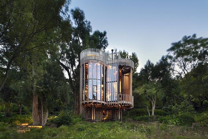Необычный дом Paarman Tree House в Кейптауне