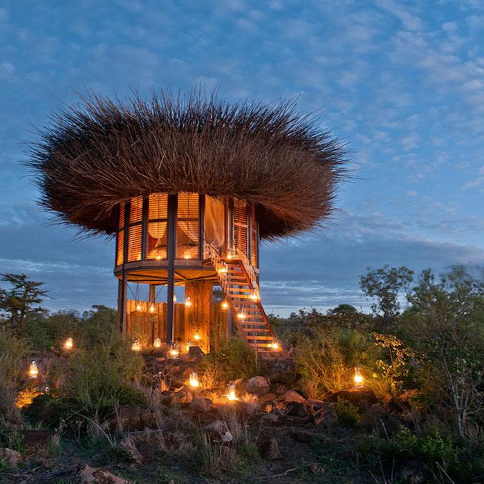 """The Bird Nest: вилла класса """"Люкс"""" в Кении"""