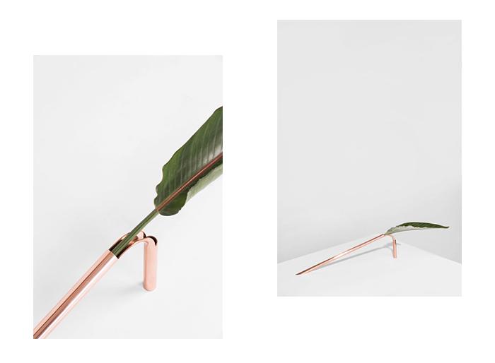 Solo Vase: стильная ваза для одного цветка от Guilherme Wentz